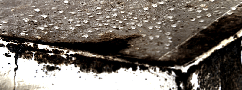 water damage and water restoration services